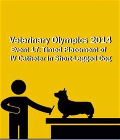 Duties of Veterinary Technicians and Assistants